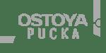 https://oktan.com.pl/wp-content/uploads/2021/01/ostoyapucka_logo_oktaninvestment-1.png